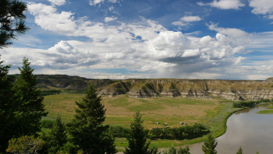 View of field area in Upper Missouri River Breaks National Monument